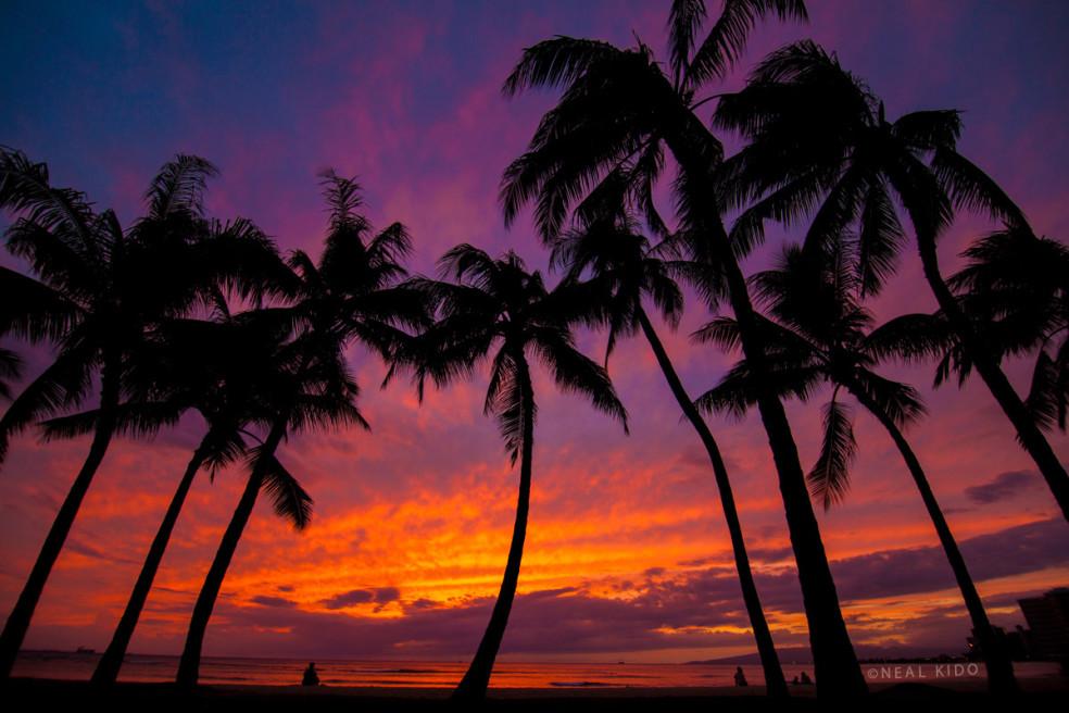 Waikiki Fire