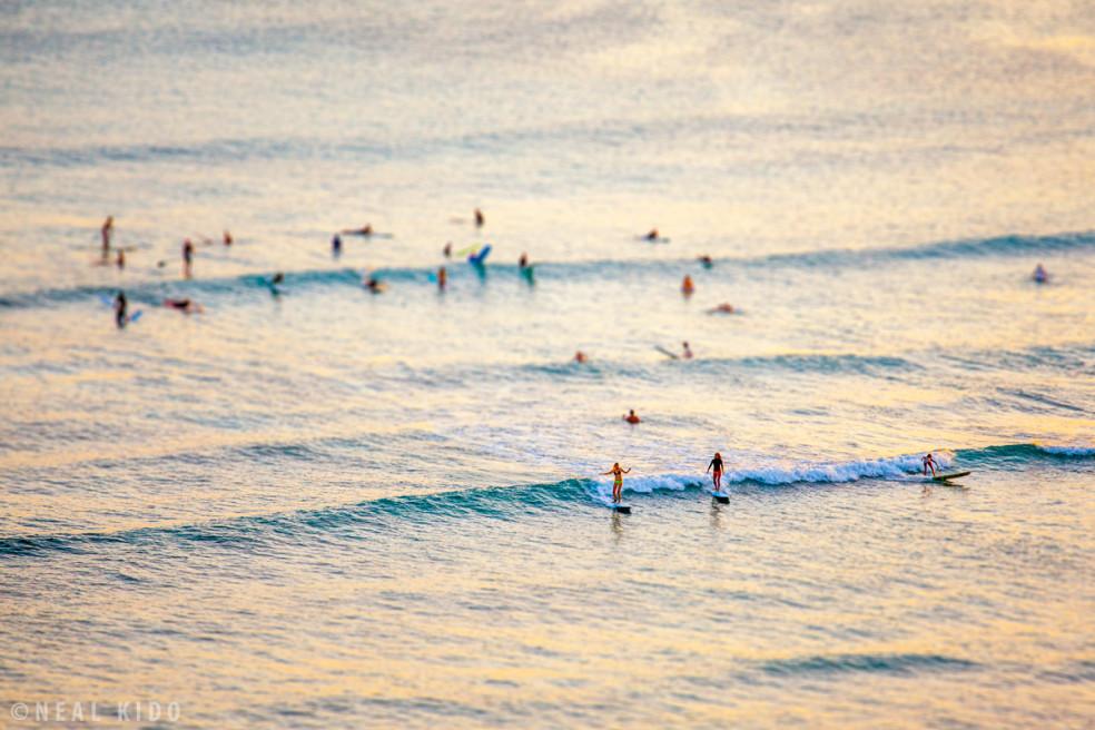 Wahine Surfers